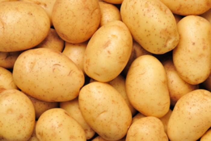potato-8705161064.jpg